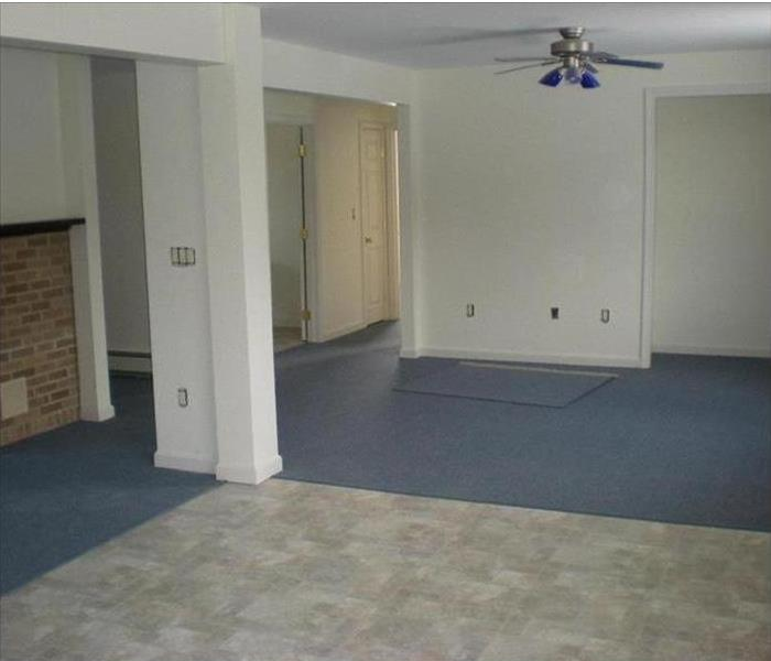 Mold Remediation in Basement Area After