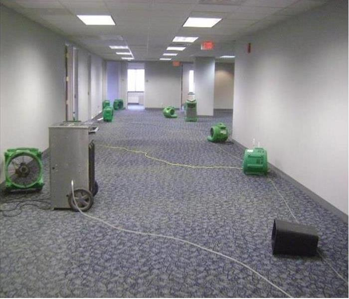 Water Damage Time is of the Essence After a Water Damage in Orange County
