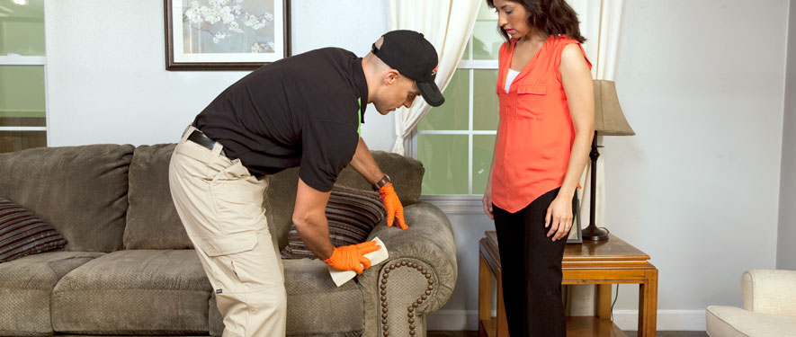 Monroe, NY carpet upholstery cleaning